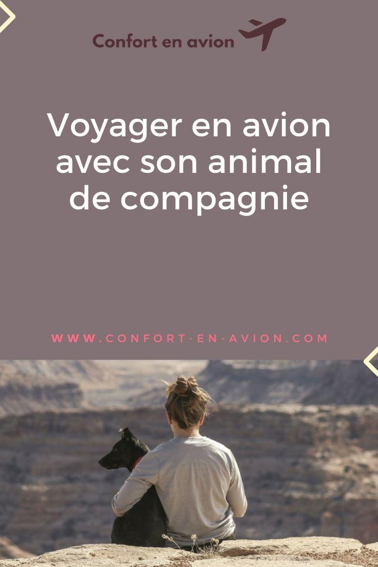 Comment voyager avec son animal ? Quelles sont les formalités à accomplir ? Soute ou cabine ? Nous avons les réponses à vos questions.